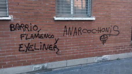 anarcochonis